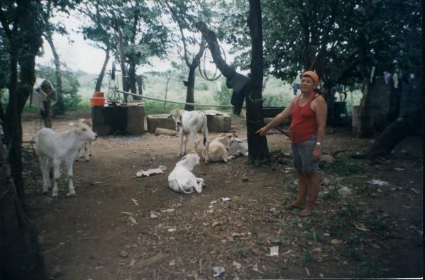 20110211232957-mujeresganaderas.jpg